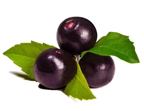 apa manfaat acai berry untuk kesehatan