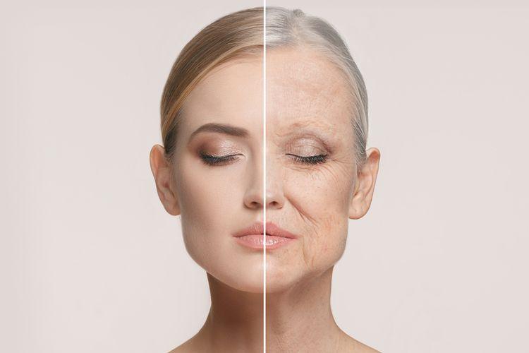 manfaat acai berry untuk penuaan dini