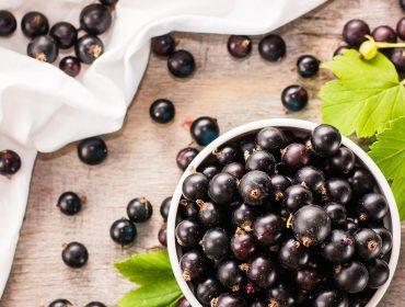 manfaat acai berry