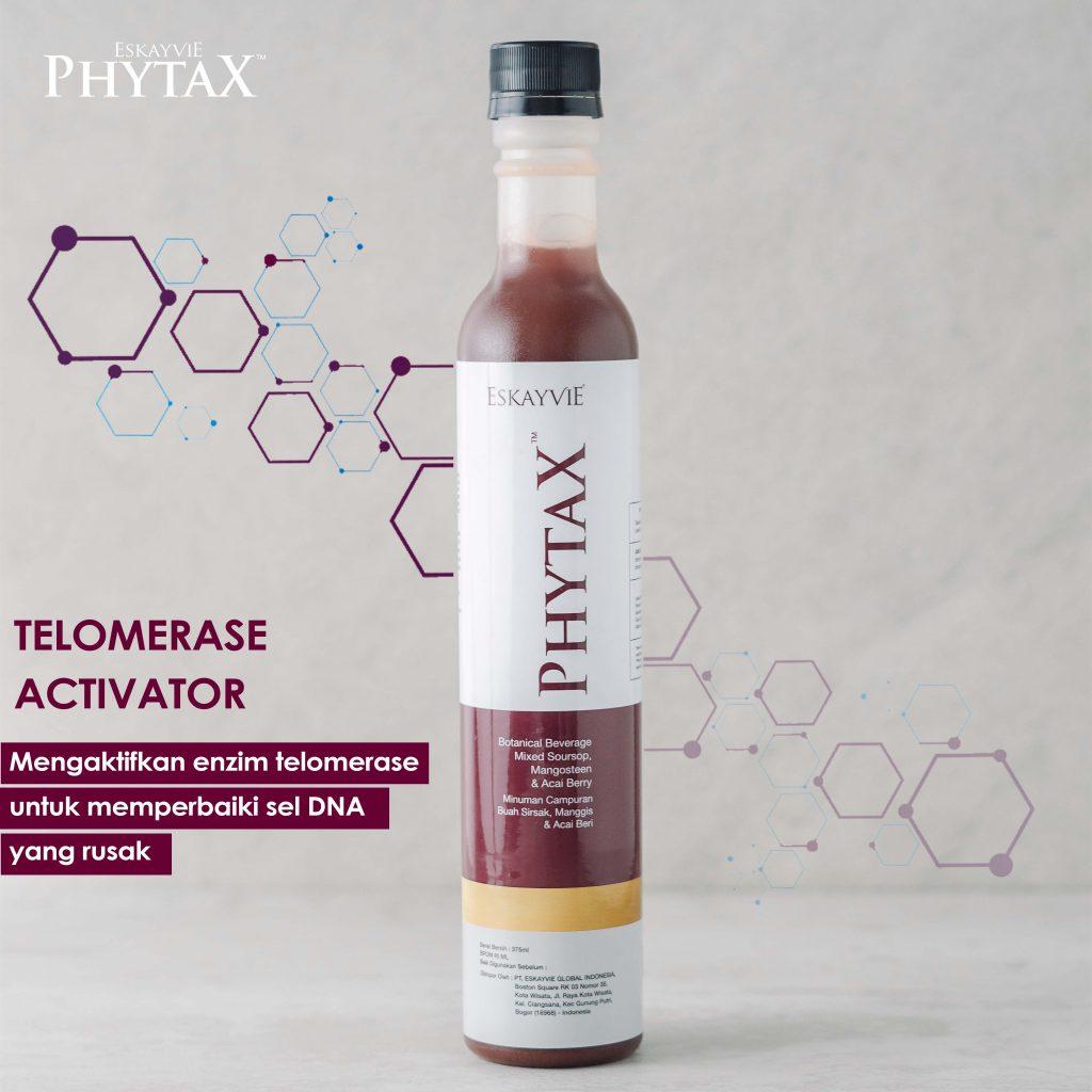 eskayvie phytax untuk melawan bahaya radikal bebas dan gula darah tinggi