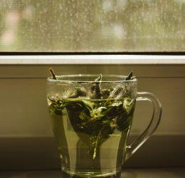 manfaat teh hijau untuk berat badan