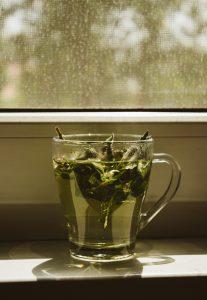 Cegah penuaan dini dengan teh hijau